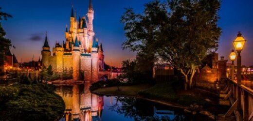 3 des meilleurs parcs d'attractions à découvrir en famille avec des enfants